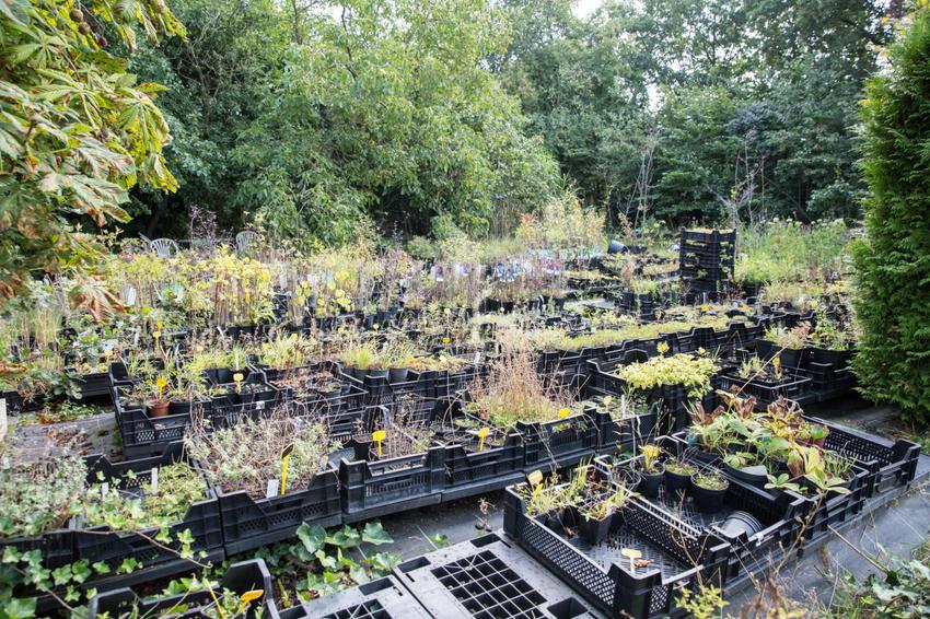 Park Als Tuin : Bos park tuintechniek winkelhart roden